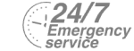 24/7 Emergency Service Pest Control in Dulwich, SE21. Call Now! 020 8166 9746